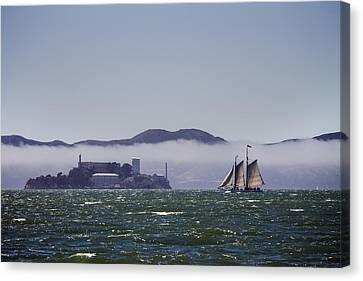 Sailing To Alcatraz Canvas Print by Dee  Savage
