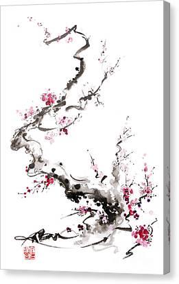 Cherry Blossoms Canvas Print - Sakura Spring Blossom. by Mariusz Szmerdt