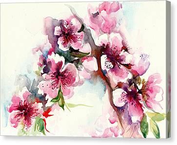 Sakura - Cherry Tree Blossom Watercolor Canvas Print by Tiberiu Soos