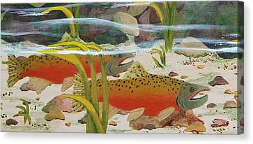 Salmon Canvas Print by Katherine Young-Beck