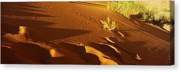 Sand Dunes In A Desert, Jordan Canvas Print