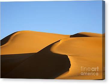 Sand Dunes Of The Sahara Desert Canvas Print by Robert Preston