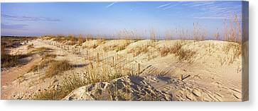 Sand Dunes On The Beach, Anastasia Canvas Print by Panoramic Images