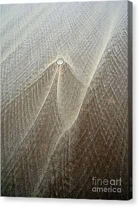 Sand Patterns Canvas Print by Robert Riordan