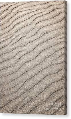 Sand Ripples Abstract Canvas Print by Elena Elisseeva