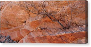Sandstone Patterns, Valley Of Fire Canvas Print by Panoramic Images