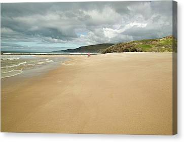 Sandwood Bay In Sutherland Canvas Print by Ashley Cooper