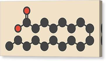 Saturated Fatty Acid Molecule Canvas Print by Molekuul