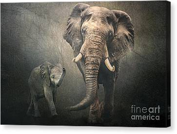 Canvas Print featuring the photograph Save The Elephants by Brian Tarr