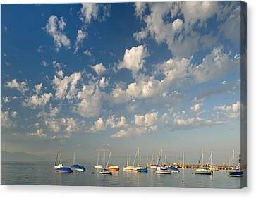 Scattered # 2 Canvas Print by Holger Spiering