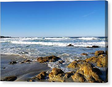 Scenic View Along 17 Mile Drive Canvas Print by Barbara Snyder