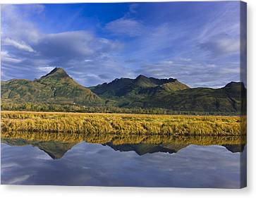 Scenic View Of Tidal Slough Along Canvas Print