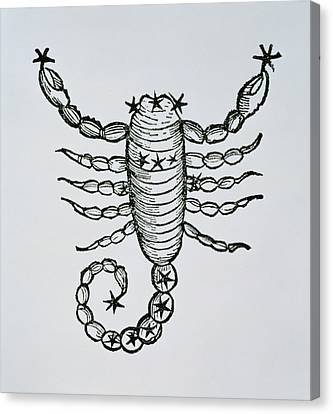 Scorpio Canvas Print by Italian School