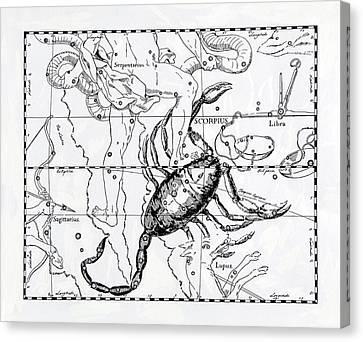 Scorpio Canvas Print by Detlev Van Ravenswaay