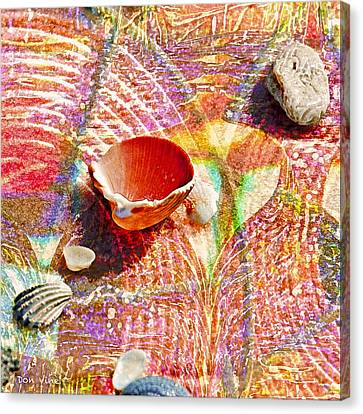 Sea Shells In A Row Canvas Print