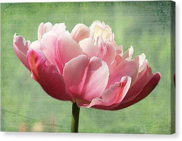Canvas Print featuring the photograph Sending Of Flowers by Trina  Ansel