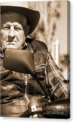 Senior Stare Canvas Print by Jorgo Photography - Wall Art Gallery