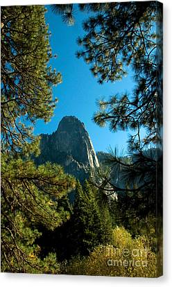 Sentinel Dome, Yosemite Np Canvas Print by Mark Newman