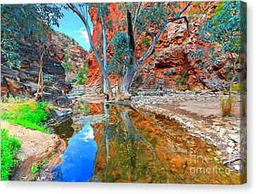 Serpentine Gorge Central Australia Canvas Print by Bill  Robinson