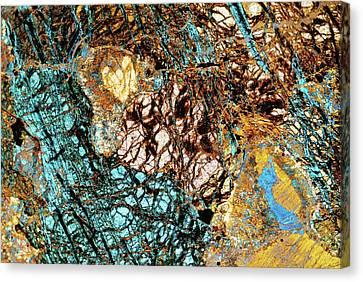Serpentine Rock Canvas Print by Steve Lowry