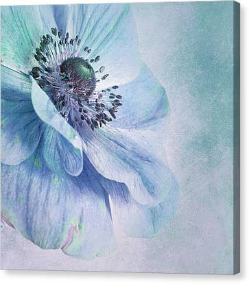 Shades Of Blue Canvas Print by Priska Wettstein