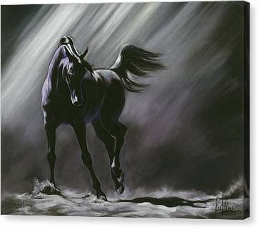 Shadow Dancer Canvas Print by Kim McElroy