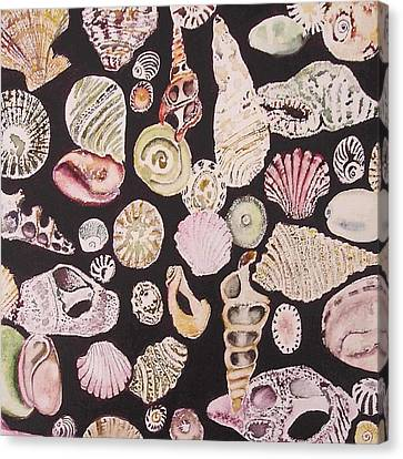 Shells By C . 1.3 Canvas Print by Cheryl Miller