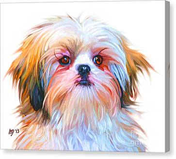 Buy Dog Art Canvas Print - Shih Tzu Painting by Iain McDonald