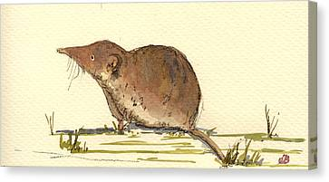 Shrew Canvas Print by Juan  Bosco