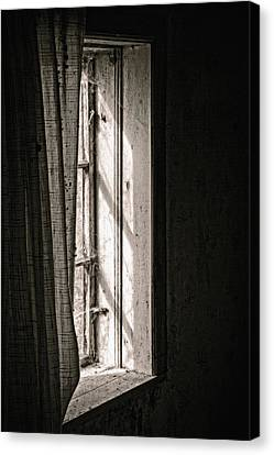 Shying From The Light Canvas Print by Odd Jeppesen
