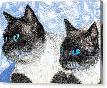 Siamese Cats Canvas Print