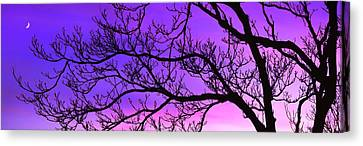 Silhouette Of A Tree At Dusk Canvas Print by Panoramic Images