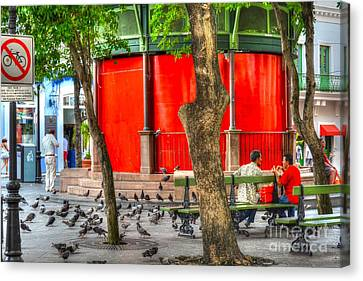 Sitting On A Park Bench Canvas Print by Debbi Granruth