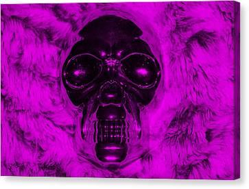 Skull In Purple Canvas Print
