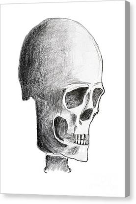Skull Canvas Print by Michal Boubin