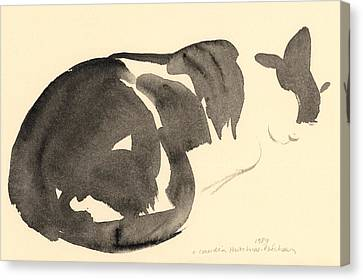 Sleeping Cat Canvas Print by Claudia Hutchins-Puechavy
