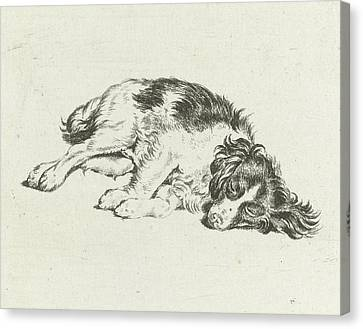 Sleeping Dog, Hendrik Godart De Mare Canvas Print by Hendrik Godart De Mar?e