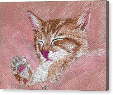 Sleeping Kitty Canvas Print