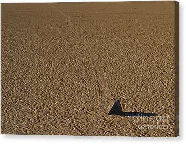 Sliding Rock On Racetrack Playa Canvas Print