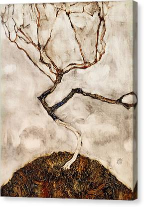Small Tree In Late Autumn Canvas Print by Mountain Dreams