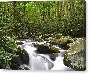 Smoky Mountain National Park Canvas Print by Frozen in Time Fine Art Photography
