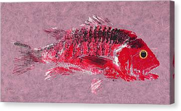 Gyotaku Canvas Print - Gyotaku Snapper by Captain Warren Sellers