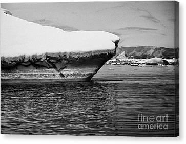 snow covered ice shelf falling into the sea at Fournier Bay Antarctica Canvas Print by Joe Fox