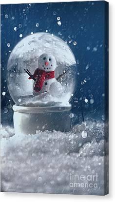 Celebrate Canvas Print - Snow Globe In A Snowy Winter Scene by Sandra Cunningham