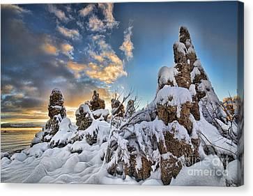 Snow On Tufa At Mono Lake Canvas Print