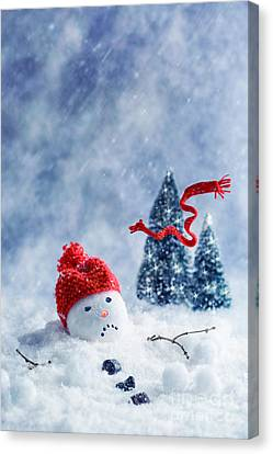 Snowman  Canvas Print by Amanda Elwell