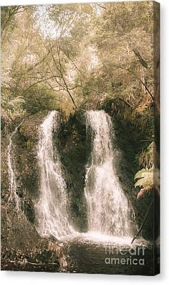Soft Vintage Forest Waterfall In Tasmania Canvas Print