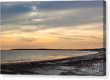 Song Of The Sunset II Canvas Print by Michelle Wiarda