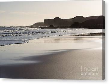 South Shields Beach Canvas Print by Ray Pritchard