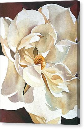 Southern Magnolia Canvas Print by Alfred Ng